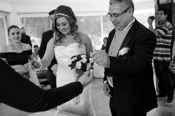 Fotografo de bodas villas de irapuato